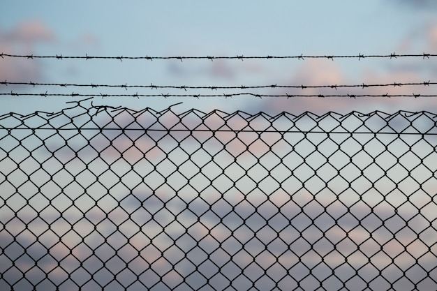 有刺鉄線のフェンス