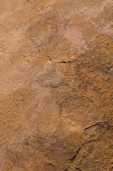 石の上の恐竜の足跡