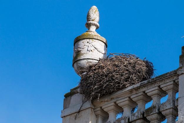 Гнездо белого аиста