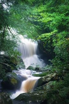 タイの自然の滝