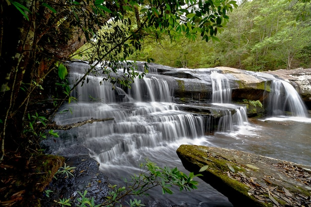 フォレスト内の滝