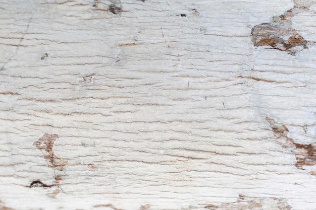 素朴な木の質感、空柔らかい木の背景