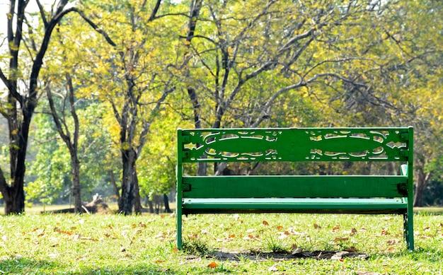 Одинокая деревянная скамейка в парке