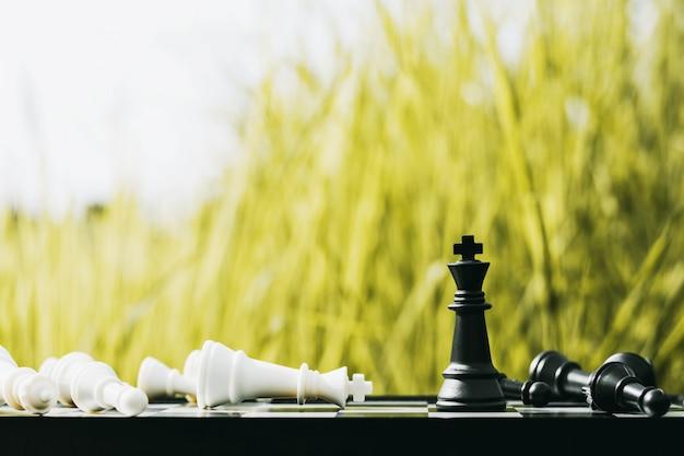 黒い王のチェスが一人で立つ