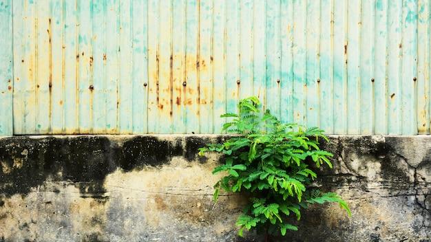 古くてさびた亜鉛メッキの鉄壁