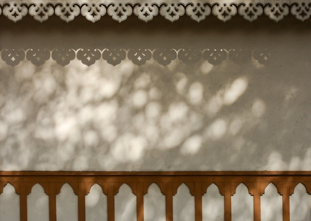 木の枝とコンクリートの壁に影付きの葉