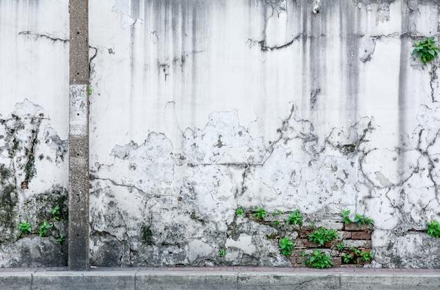 高齢者や汚れた通りの壁の背景