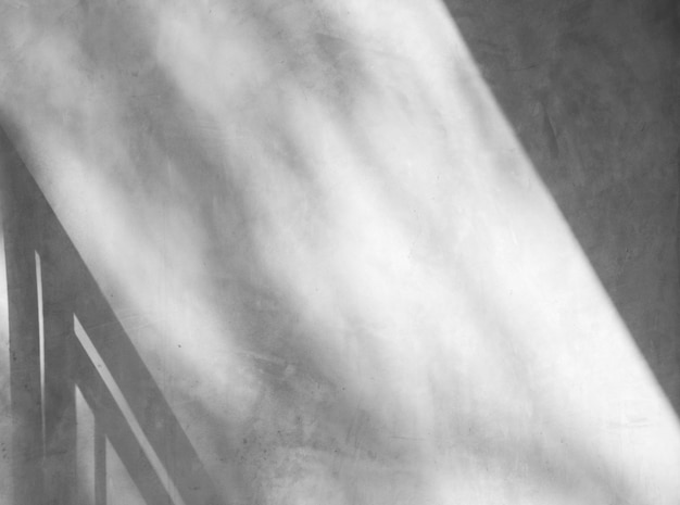 窓から影と白い壁の抽象的な背景。