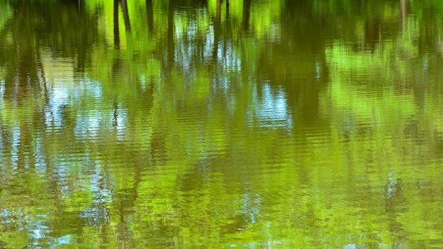 水の上の木の反射の抽象的なカラフルです