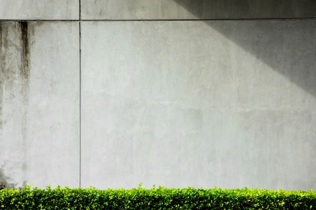建物からの影と灰色のコンクリートの壁