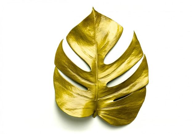 黄金の葉、白で隔離