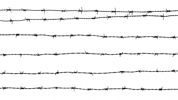白い背景で隔離の有刺鉄線のシルエット