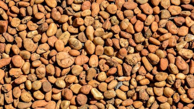 背景に茶色の小石