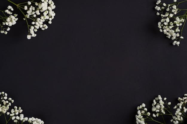 黒い背景にコーナー挨拶ボーダーとしてカスミソウの新鮮な花の小枝。上面図。