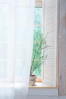 木製の窓に緑の木とカーテンがある空のインテリア。