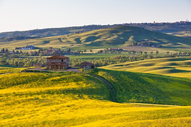 Открытый тосканский валь д орча зеленые и желтые холмы