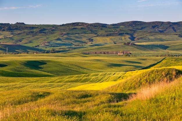 Открытый тосканский пейзаж золотых холмов на закате