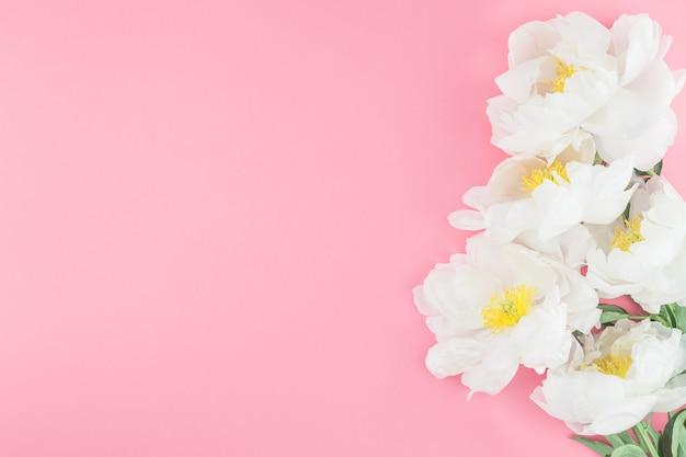 Цветущие белые цветы пиона