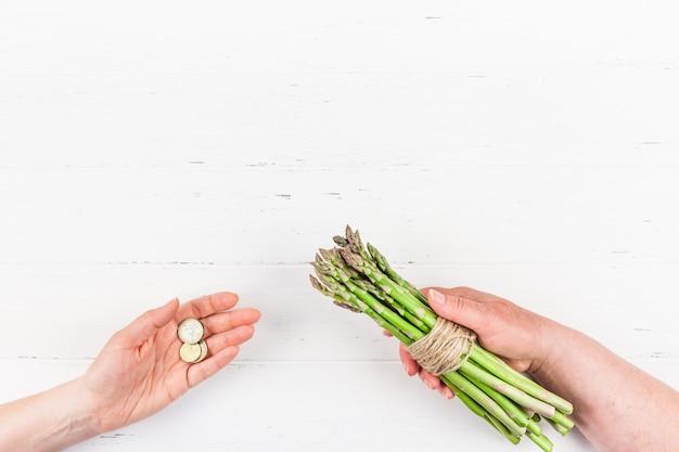 女性の手で新鮮なグリーンアスパラガス