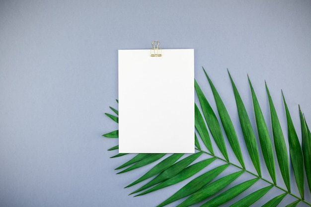 Макет пустой белой открытки тропических пальмовых листьев