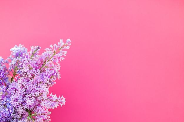 ライラック色の花とピンクの背景