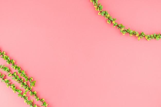 開花メギと色紙の背景