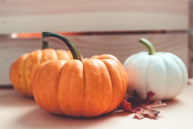 秋のオレンジと白のカボチャ