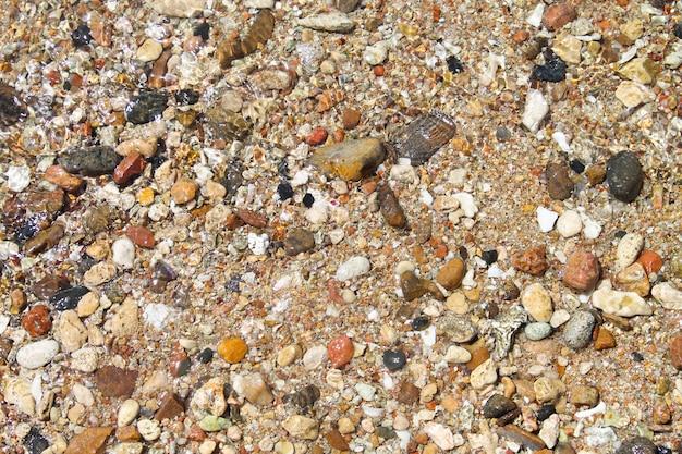 背景は貝殻や小石で形成されています