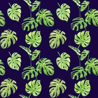 熱帯の葉のモンステラの水彩イラストのシームレスなパターン。