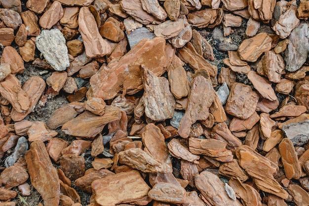 木の樹皮の背景。