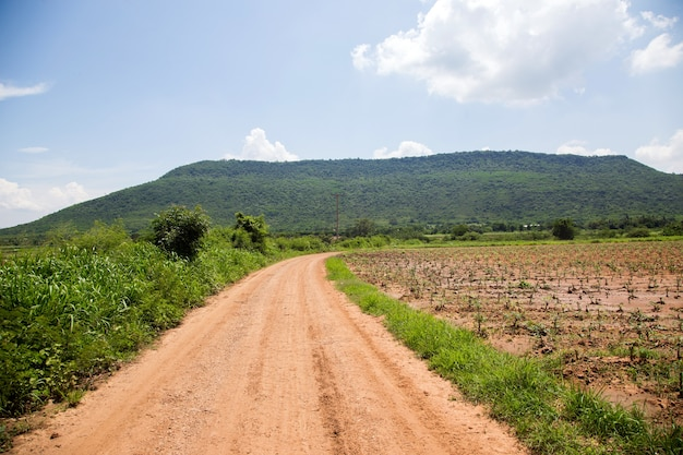 農業農場の山への道
