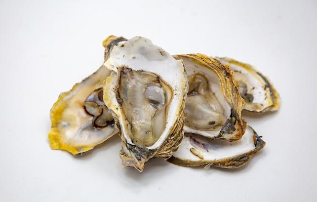 分離された白の新鮮なカキ魚介類を開く