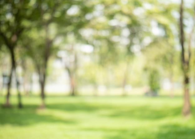 Абстрактный размытия зеленого цвета в саду для фона