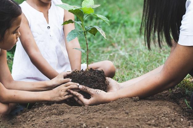 Дети и родительские руки вместе сажают молодое дерево на черной почве