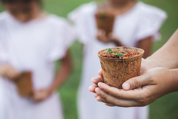 庭に植えるためのリサイクル繊維ポットに若い苗を保持している女性の手