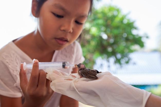Вода и еда азиатской девушки ребенка подавая к птице воробья младенца с шприцем
