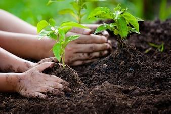 小さな女の子と一緒に植える彼女の母