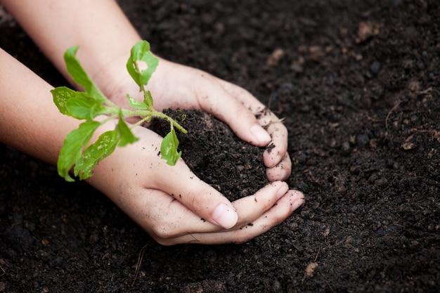 世界の概念を保存するように黒い土壌に若い木を植える子供の手