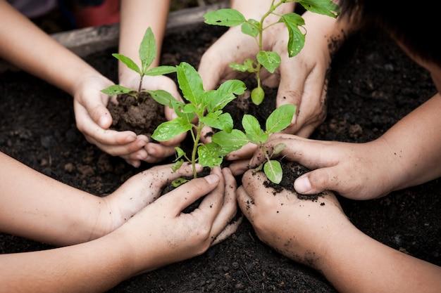 子供と親の手は、世界の概念を保存するために一緒に黒い土壌に若い木を植える