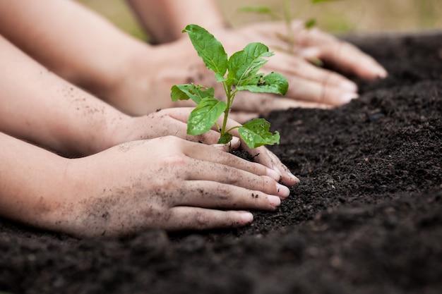 子供と親の手は、世界の概念を保存して一緒に黒い土壌に若い木を植える