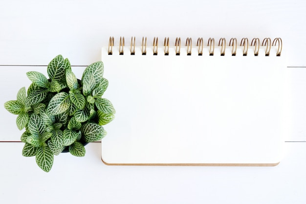 白いウッドの背景の空白のノートブック紙
