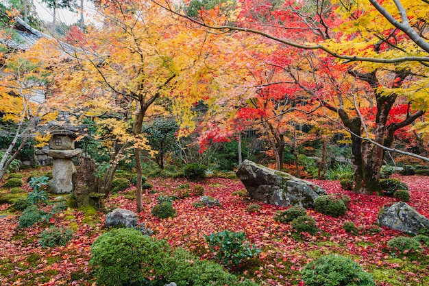秋の美しい日本庭園と日本の古い禅寺のバルコニーからの眺め