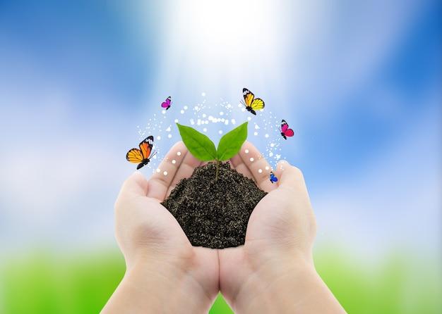 手と蝶の植物 - 自然の背景、環境コンセプト