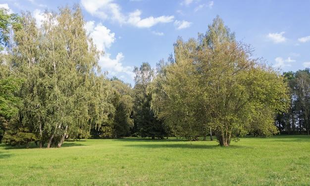Старый парк с зелеными газонами и большими деревьями.