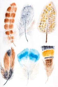 手描き水彩羽セット。白で隔離。
