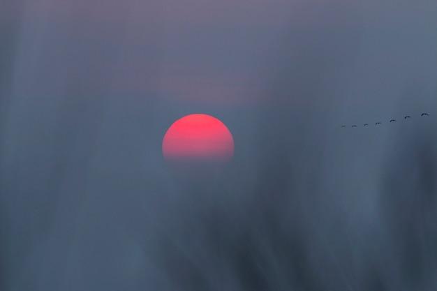 暗い青い空と赤い夕日