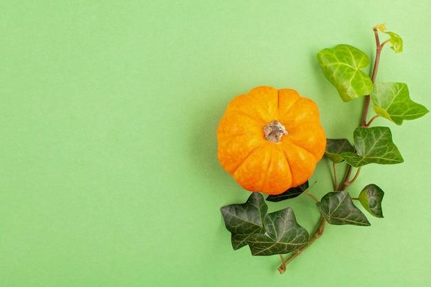 カボチャとパステル調の背景の上の葉