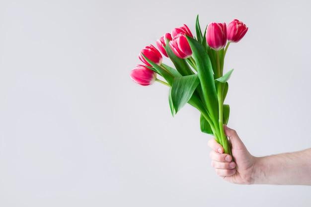 Рука мужчины с розовыми тюльпанами букет на сером.