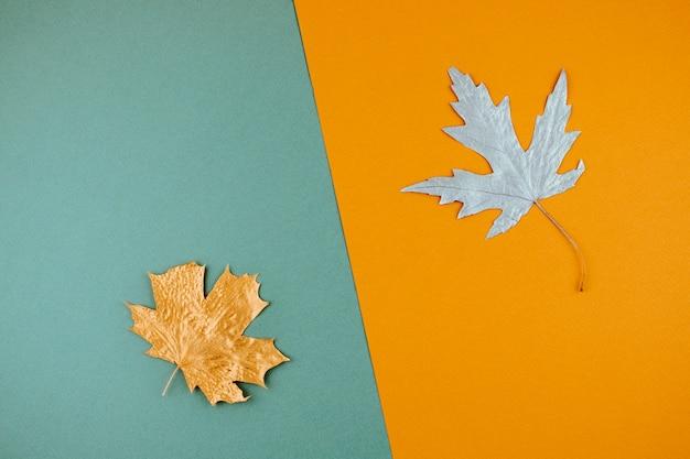 秋秋の背景