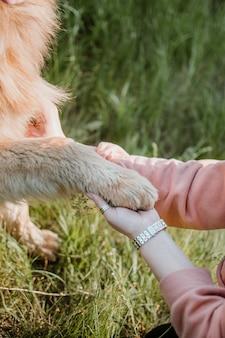 ペットの愛、犬は親友です
